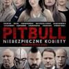 斗牛犬之女.Pitbull.Tough.Women.2016.1080p.BluRay.x264.CHS.ENG-4.74GB