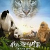 我们诞生在中国.Born.in.China.2016.HD1080P.X264.AAC.Mandarin.CHS.Mp4Ba