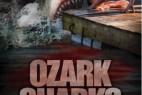密苏里鲨鱼.Summer.Shark.Attack.2016.1080p.BluRay.x264-中英双字