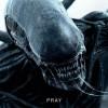 异形:契约.Alien.Covenant.2017.1080p.WEB-DL.DD5.1.H264.CHS.ENG-3.85GB