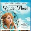 [中英双字]摩天轮.Wonder.Wheel.2017.1080p.BluRay.x264.CHS.ENG-3.01GB
