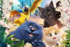 [简体字幕]猫与桃花源.Cats.and.Peachtopia.2018.1080p.WEB-DL.X264.AAC-1.9GB