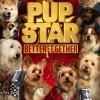 [中英双字]萌犬好声音3.Pup.Star.3.2018.1080p.WEB-DL.X264.AAC.2Audio.CHS-1.7GB