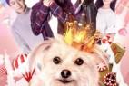 [简体字幕]犬犬之心.2018.1080p.WEB-DL.X264.AAC-1.63GB