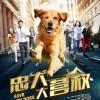 [简体字幕]忠犬大营救.Save.My.Dogs.2018.1080p.WEB-DL.X264.AAC- 1.4GB