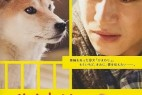 [向日葵与幼犬的7天][BD-MKV/1.46GB][日语中字][720P][日本感人动物家庭片]]
