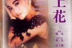 [海上花][BD-MKV/1.77GB][国语中字][1080P][张艾嘉领衔主演,香港早期同性电影]
