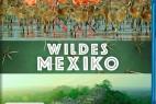 [墨西哥:地球生命的狂欢.第2集][BD- MKV/1.21GB][英语中字][1080P][BBC出品 豆瓣8.5分纪录片]