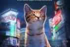 [猫咪国度][HD-MP4/1G][英语中字][1080P][东京喵星人文化产业的发展]