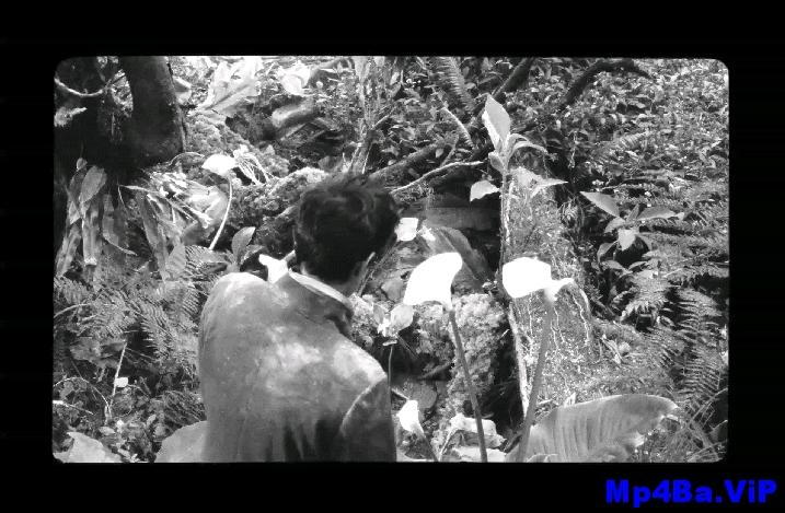 [简体字幕]野小子们.The.Wild.Boys.2017.1080p.WEBRip.AAC.x264.CHS- 2.35GB