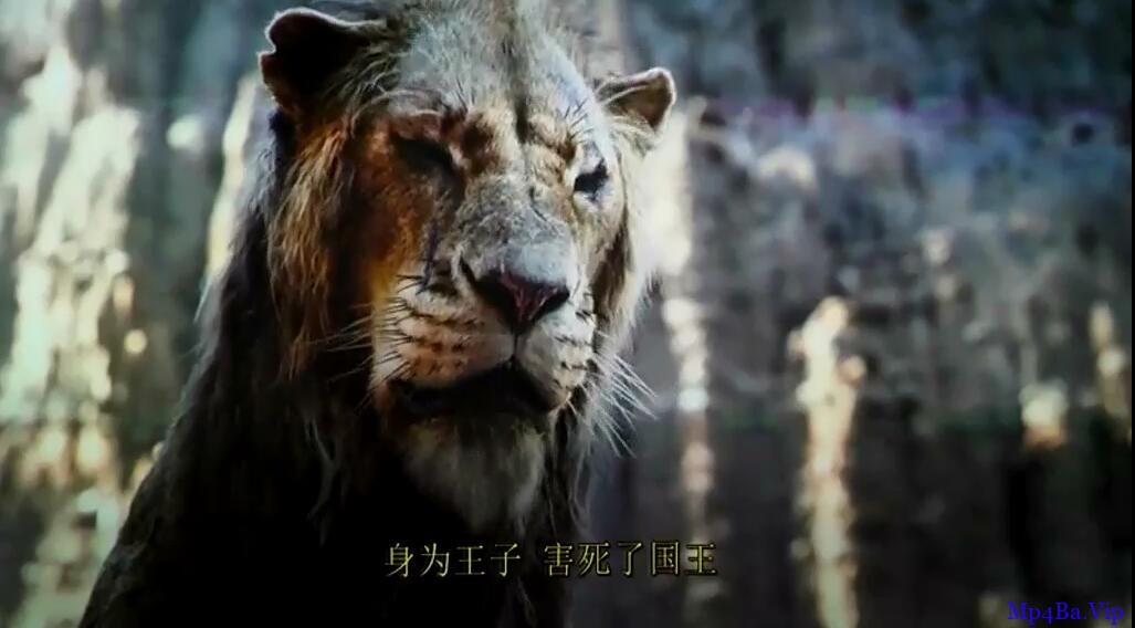 [狮子王真人版][TC-MP4/1.5G][英语中字][720P][迪士尼出品经典狮子王再现]